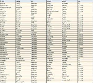 2017 Yılında il il bebeklere en çok verilen isimler belli oldu