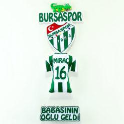 Bursaspor Kapı Süsü
