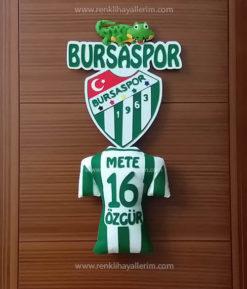 Bursaspor Kapı Süsü - Bursa - Timsah