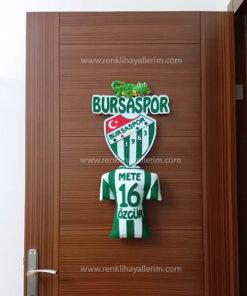 Bursaspor Kapı Süsü - Bursa - Timsah Mete Özgür