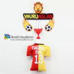 Fanatik Galatasaray Bebek Kapı Süsleri